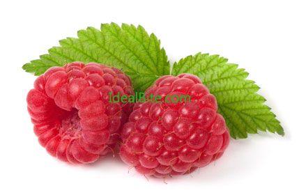 raspberry ketone dosage instructions