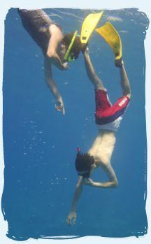 scuba diving instruction manual