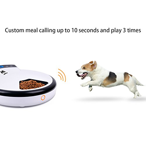 automatic pet feeder instructions